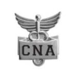 """PROFESSIONAL LAPEL PIN-""""CNA"""""""